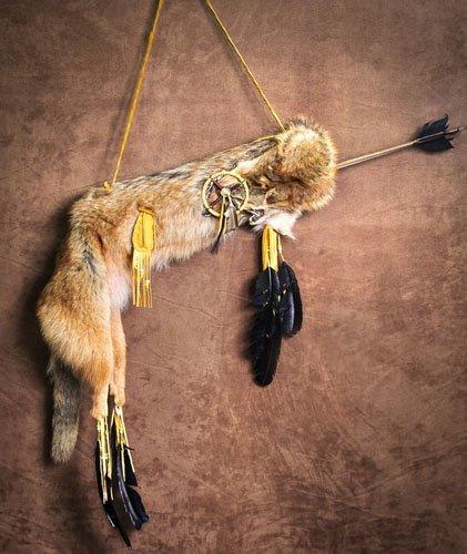 IMGP0077 Coyote Quiver w/ 2 Arrows
